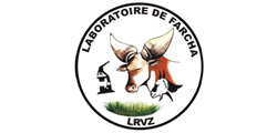 lvrz_ired_tchad